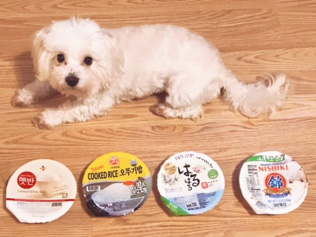 Best Korean Microwaveable Instant Rice Brands - Ponyo
