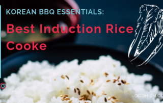 Best Induction Rice Cooker Feature Pic